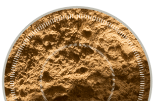 Test Dust